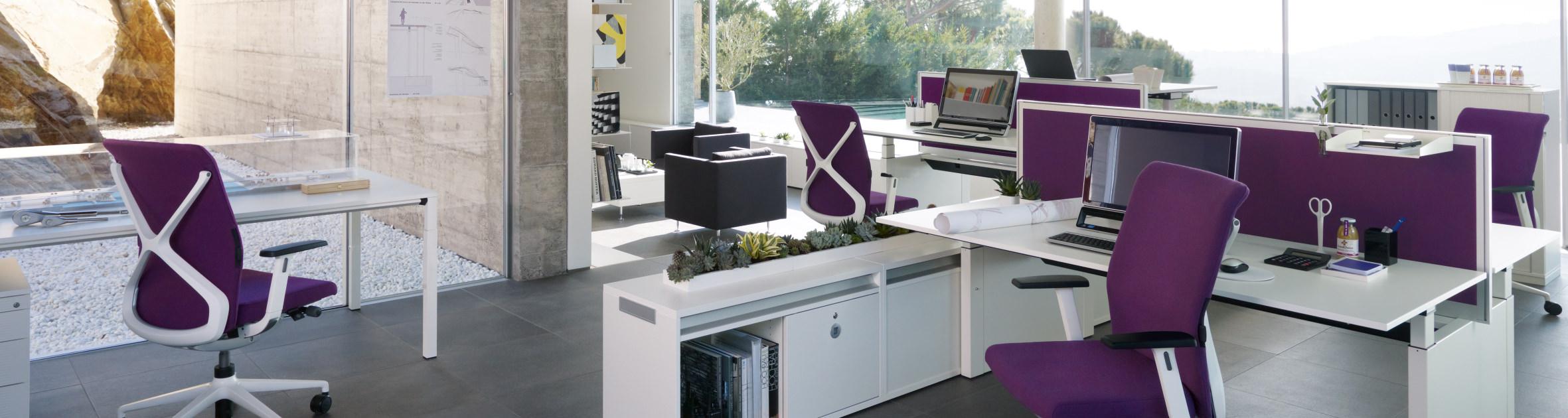 ckw Einrichtung, Büro in Lila